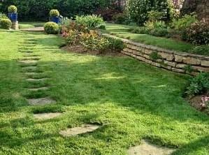 la consoude utile au jardin
