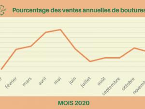 graphique de vente b-actif en 2020